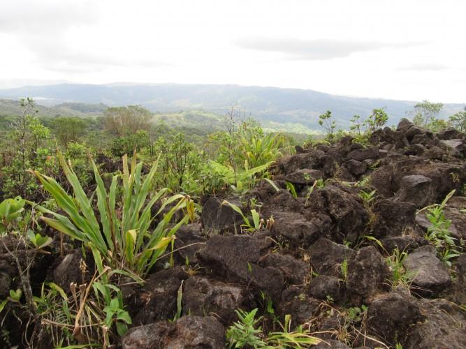 Costa Rica - Vulkanen & Nevelwouden